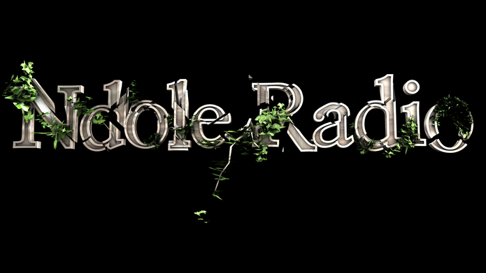 Ndole Radio, la web radio du Cameroun a cessé d'émettre
