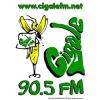 Ecouter Cigale FM en ligne