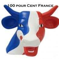 Ecouter 100 Pour Cent France en ligne