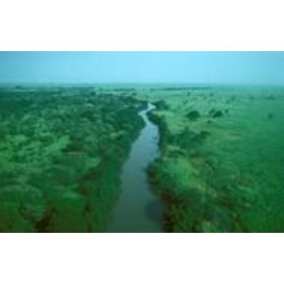Radio Congo Terra
