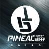 Ecouter Pinealt Tunes Radio Deep en ligne