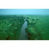 Ecouter Radio Congo Terra en ligne
